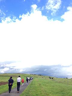 北海道旅行 03 牧場の丘.jpg